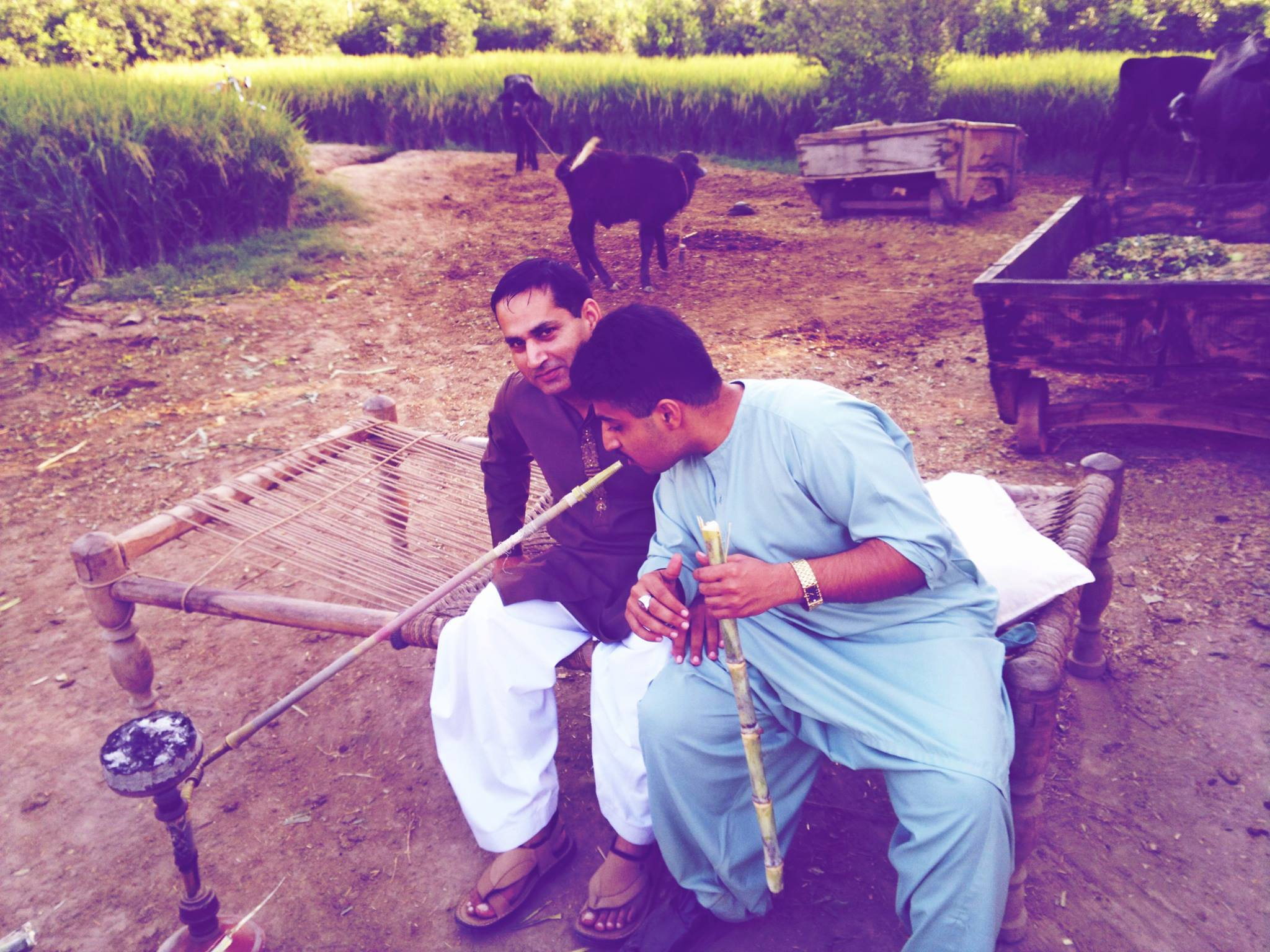 Punjabi rapper Kasim Raja (right) smoking sheehsa in his ancestral village